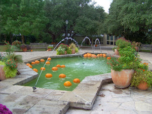 Are those pumpkins in the pool?