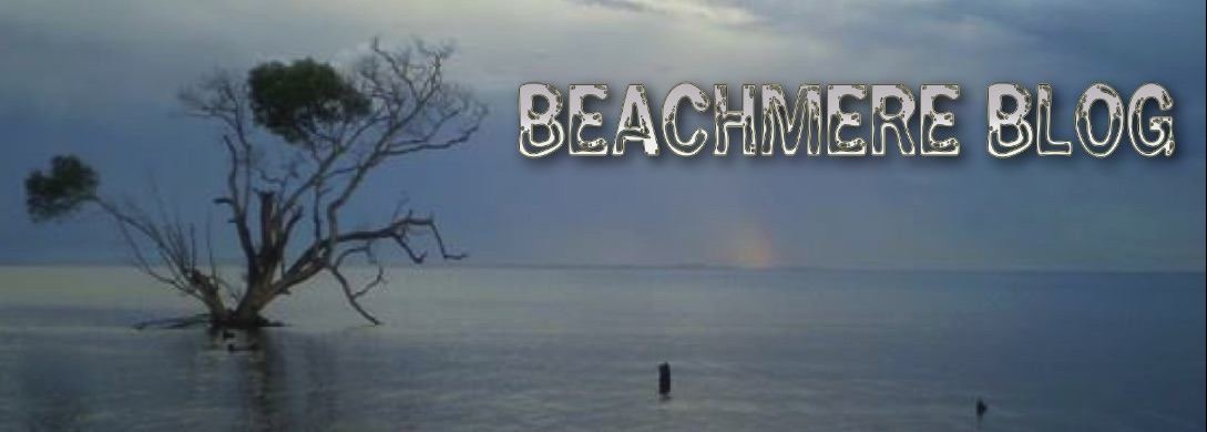 Beachmere Blog