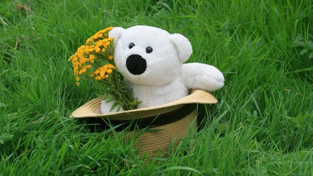 Osito de Peluche con Flores para San Valentin