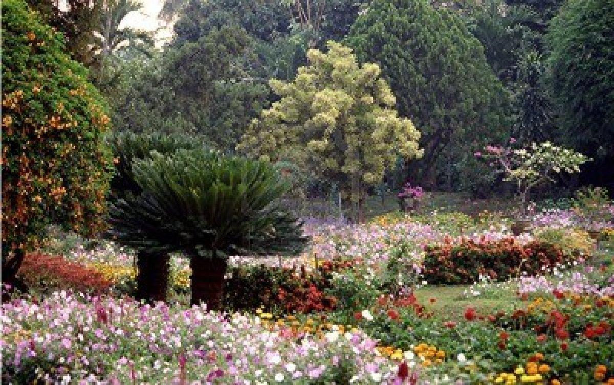 Exaltando al rey de reyes rebeld a y desobediencia for Cancion en el jardin del eden