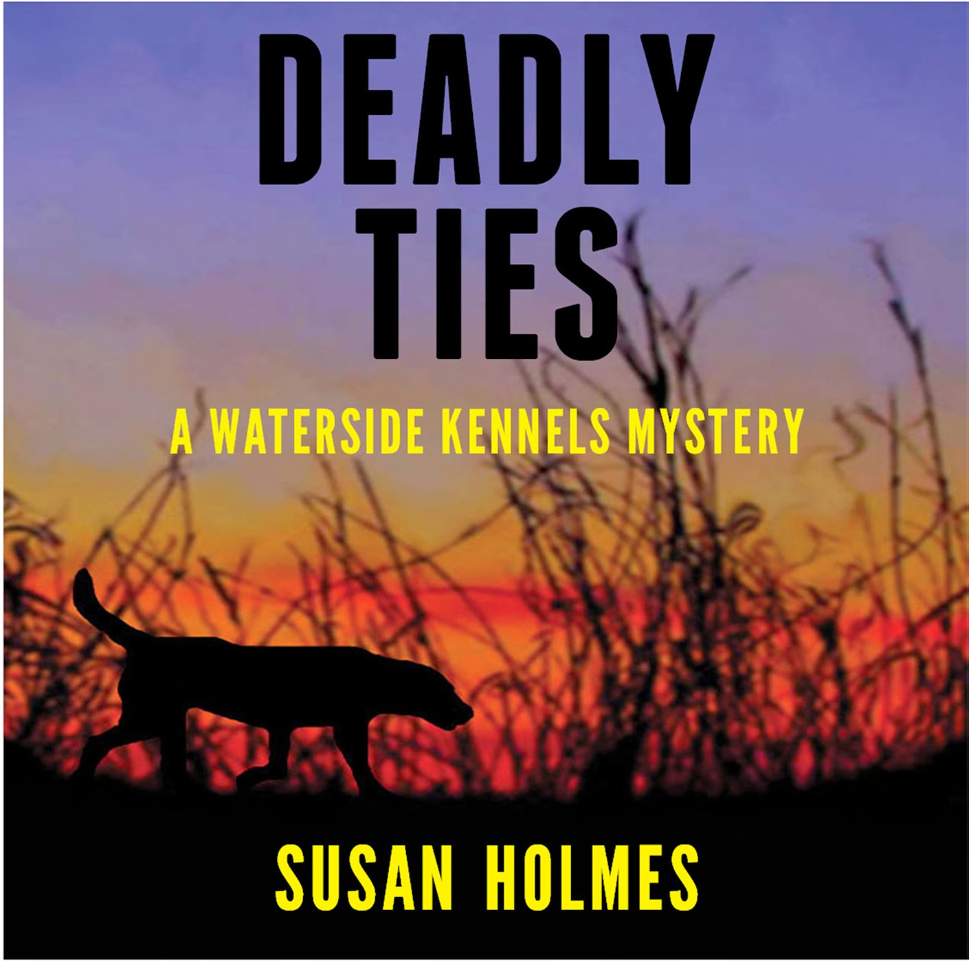 http://www.amazon.com/s/ref=nb_sb_noss_1?url=search-alias%3Dstripbooks&field-keywords=Susan+Holmes