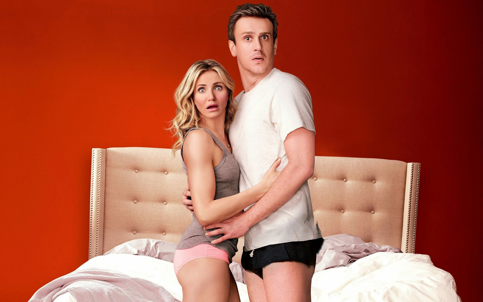 Download HD Sex Tape 2014 Movie Wallpapers