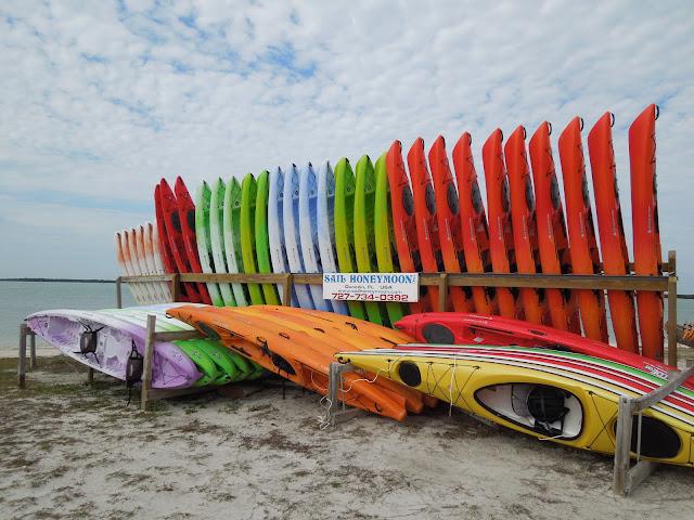 kayaks for rent on Dunedin Causeway