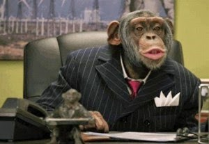 Ketika Anda Meniru Kompetitor, Anda Menjadi Monyet !