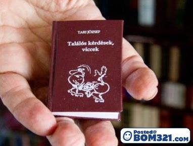 Perpustakaan Dengan Buku Mini