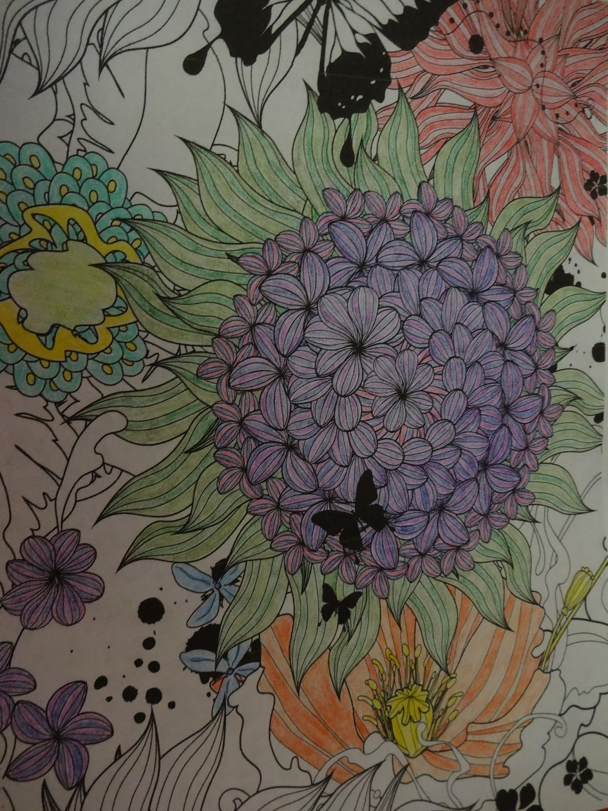 Color art floral wonders - I Decided On Colored Pencils Because I Find Them Flexible And Very Relaxing The First Day And Every Day Since I Have Spent At Least An Hour A Day
