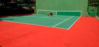 Paredão é um ótimo companheiro no Tênis