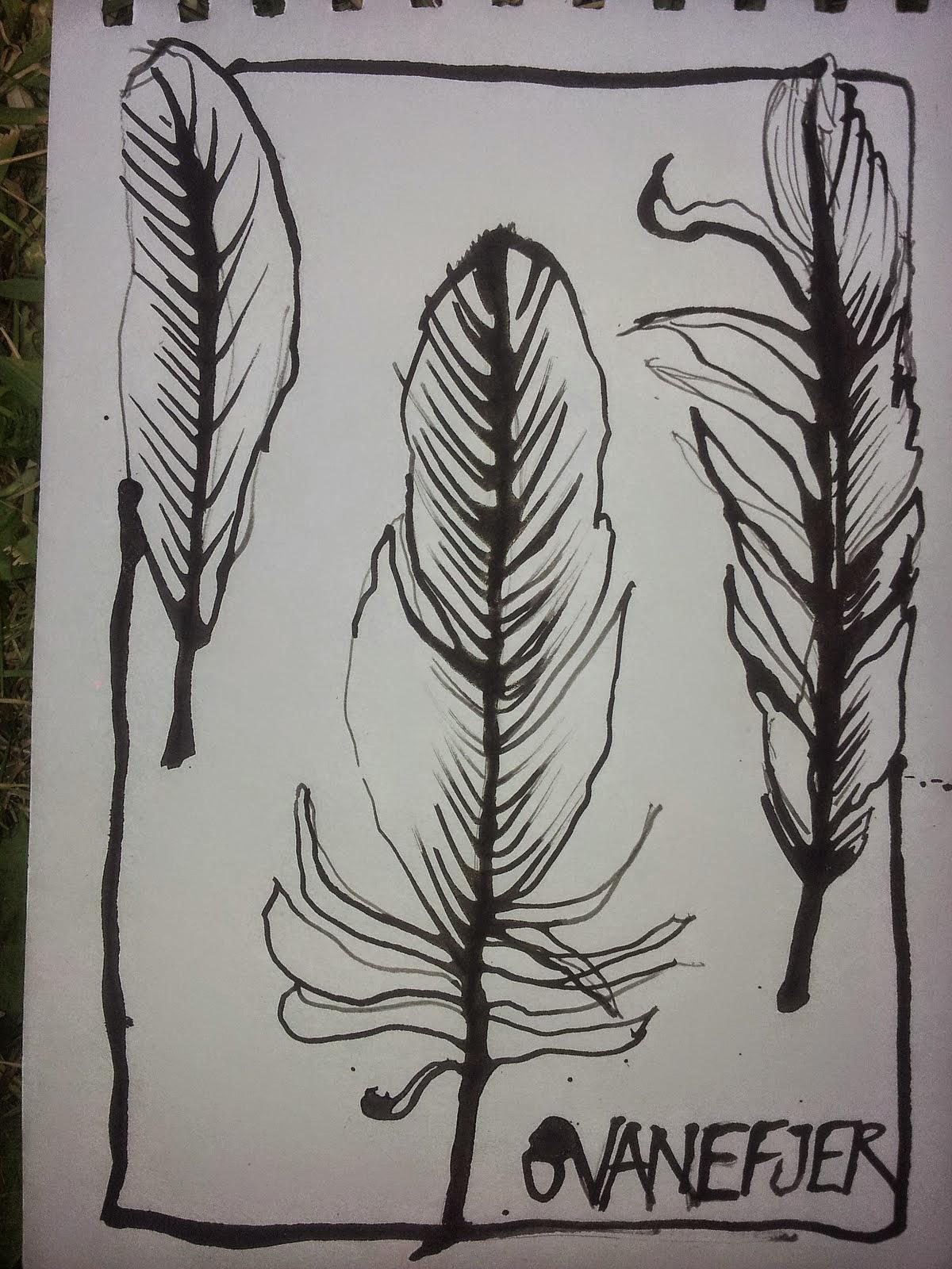 Sådan tegner du med svanefjer...