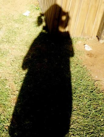 Sombra de payaso