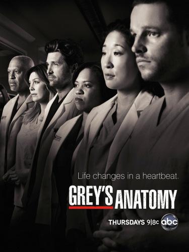 Anatomia Grey Tem 9