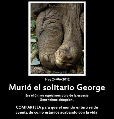 24 de junho de 2012, faleceu em Galápagos o Solitário George