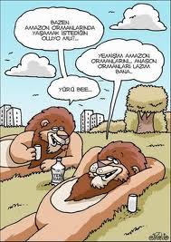 Karikatür resimleri komik karikatürler 2012 karikatürleri yeni