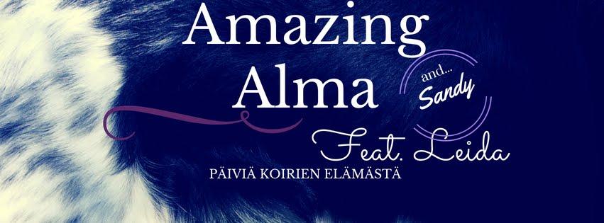 Amazing Alma, feat. Leida & Sandy               - päiviä koirienelämästä