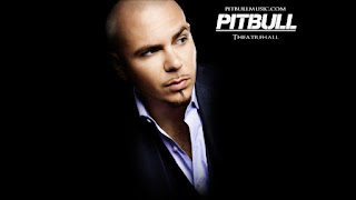 Pitbull HD Desktop Wallpaper