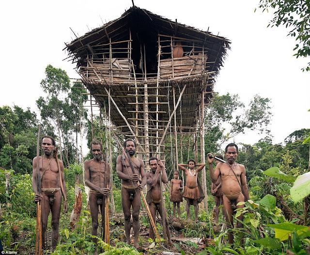 Korowai Tribe