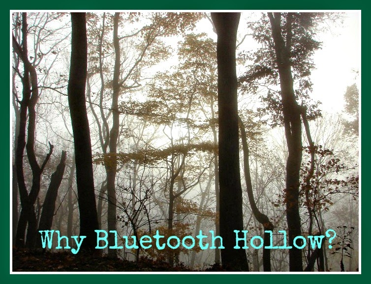 Why Bluetooth Hollow?