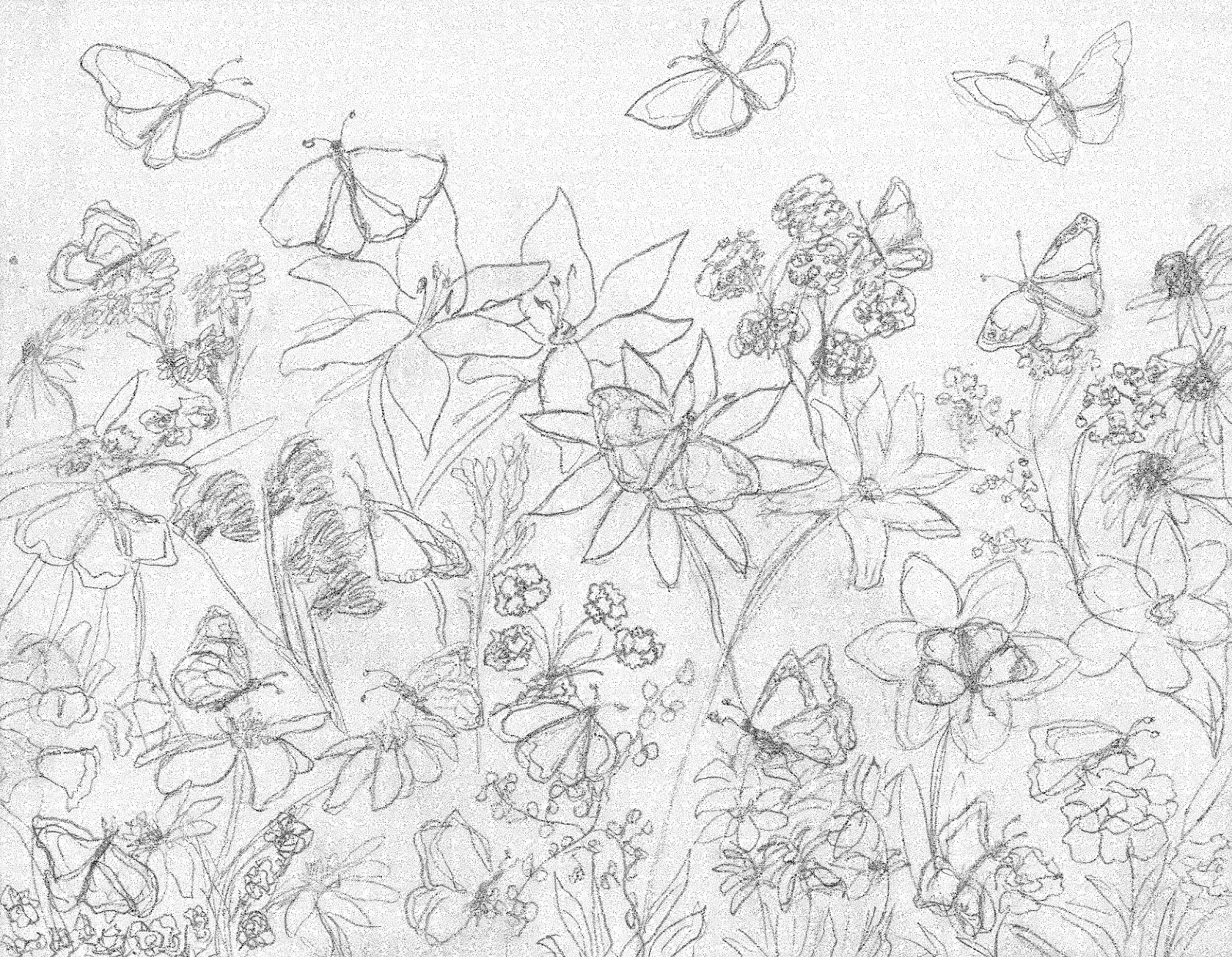 butterfly garden kit coloring pages - photo#9