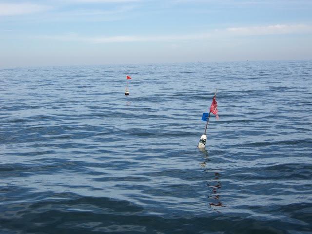 Fishing buoys