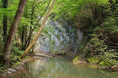 Green landscape around Fornant river