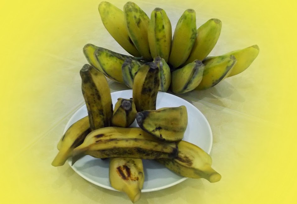 Search Results For: manfaat pisang kepok rebus