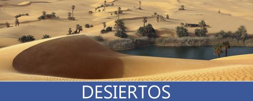 Imágenes y Fotografías del Desierto, Dunas y Oasis con arena y vegetación propia del desierto