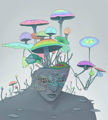 Mushroom dreaming