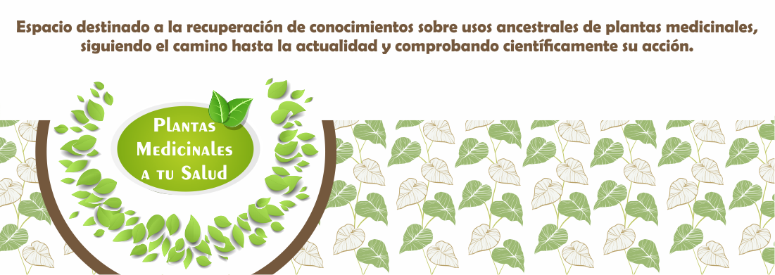 PLANTAS MEDICINALES A TU SALUD