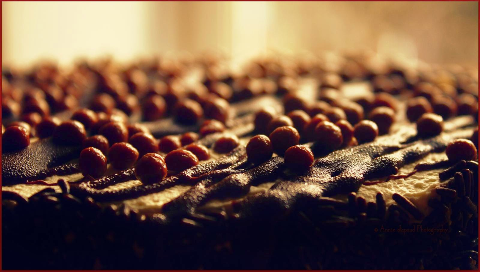 macro image of the chocolate decorations on top of a chocolate cake