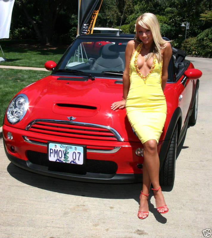 Mini Cooper Gallery Cars Art Cars Automotive