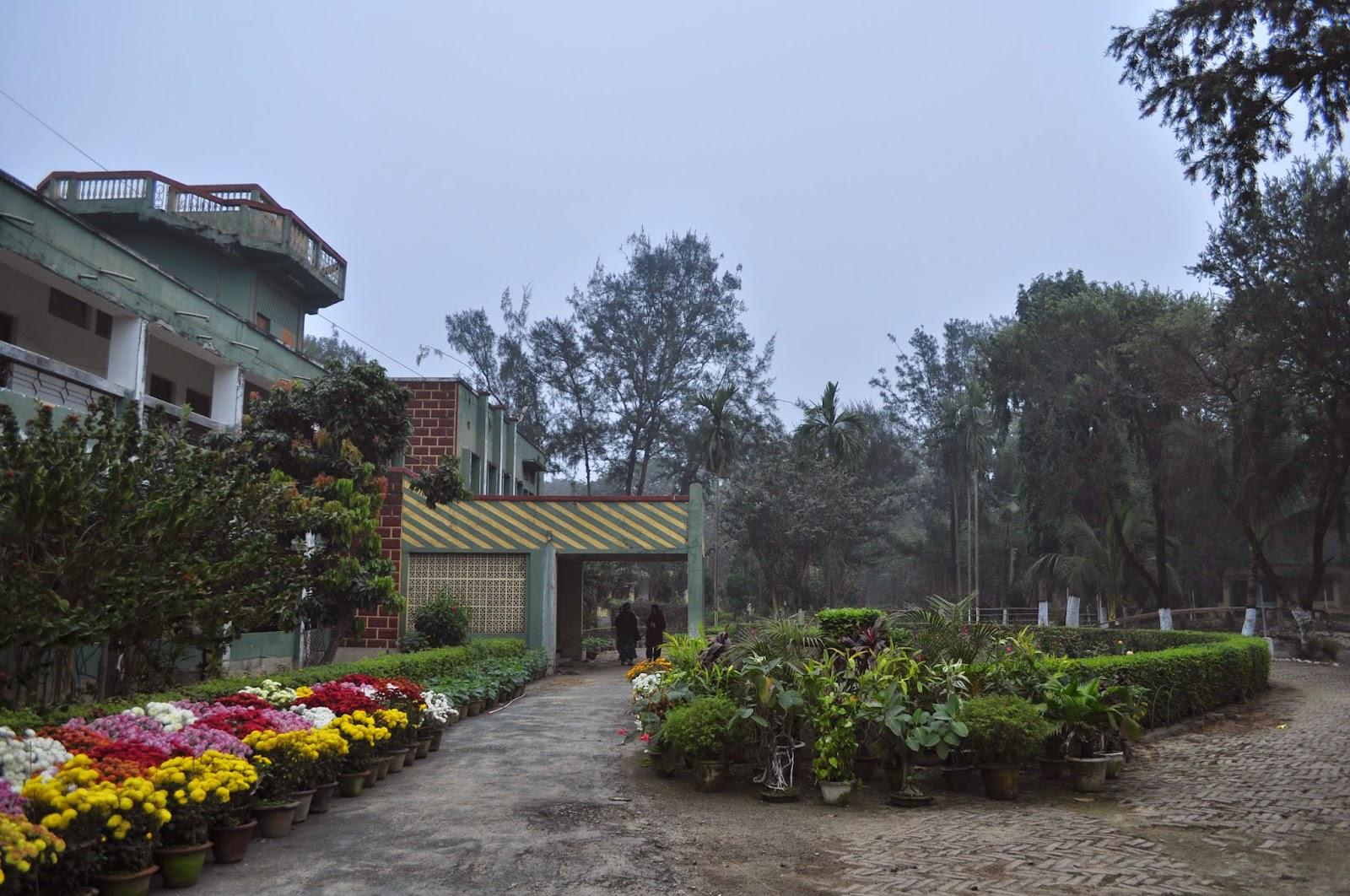 lodge under west bengal tourism department