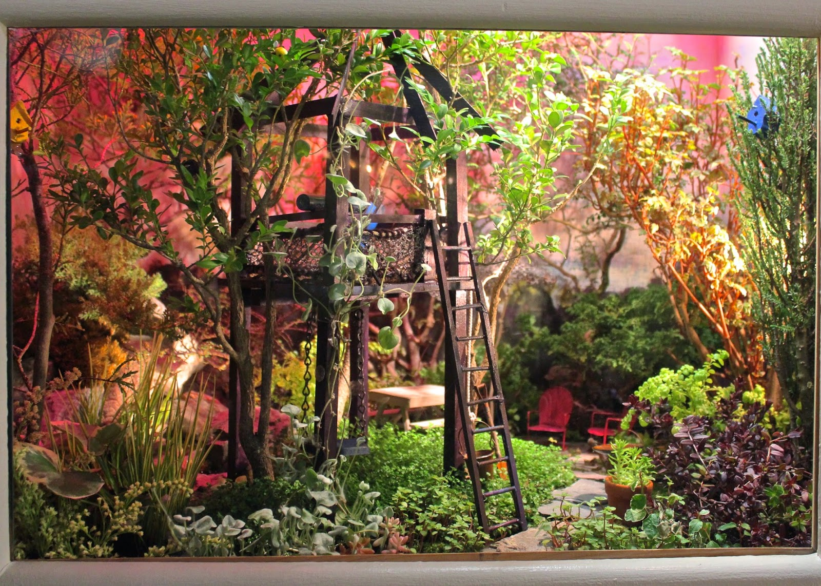 red house garden two enchanting miniature gardens