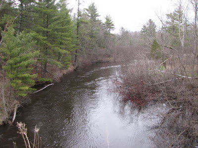 Pere Marquette River at M-37