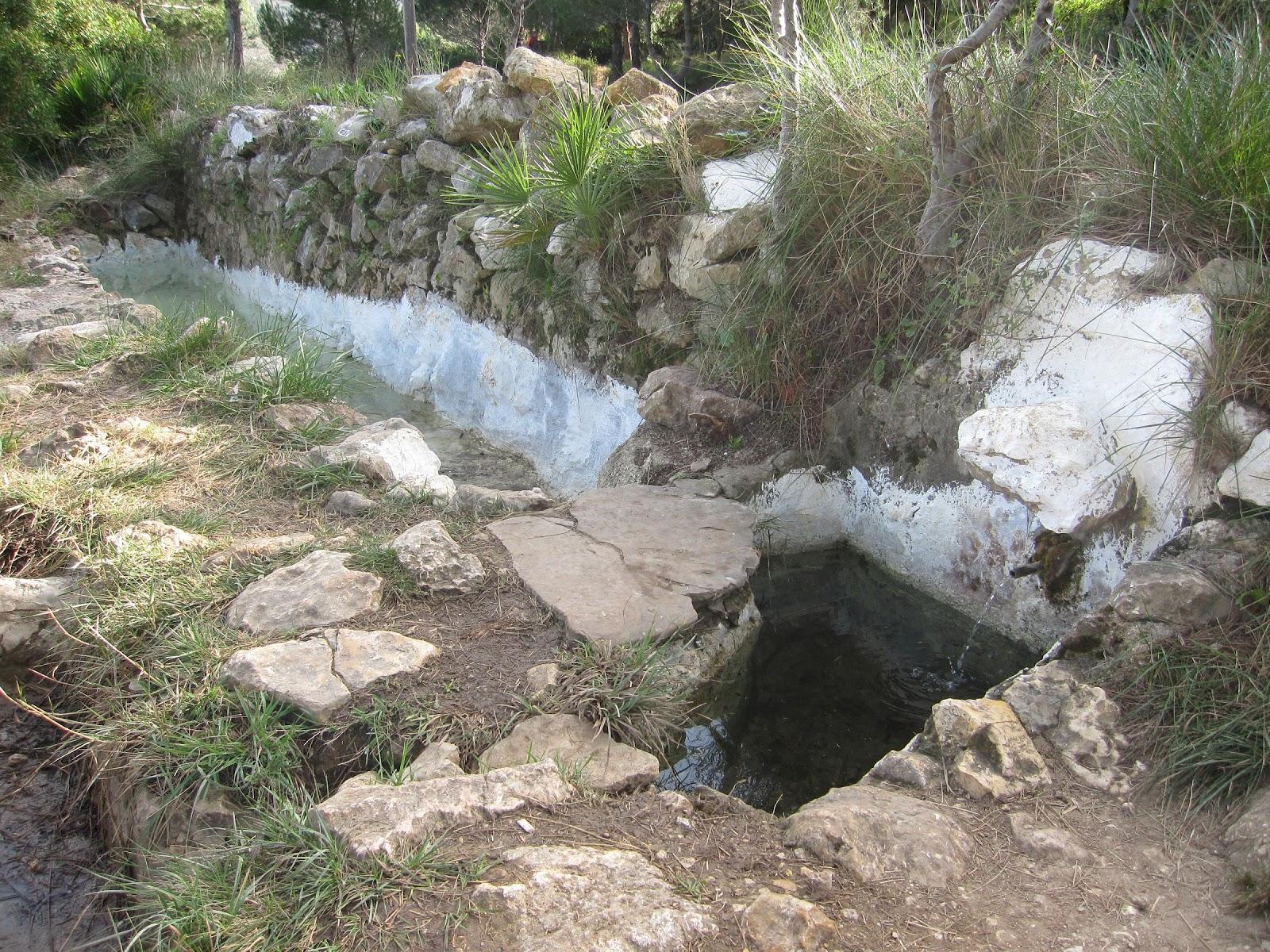 Font de la Sangonera