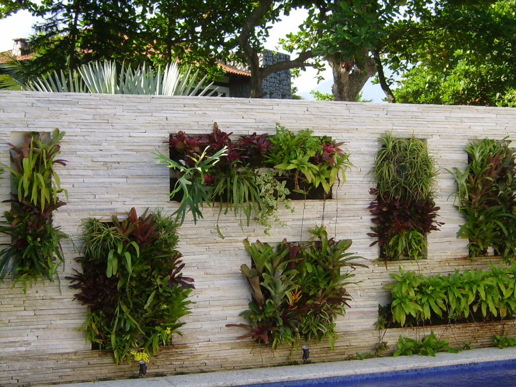 plantas jardins vasos : plantas jardins vasos:Enviar por e-mail BlogThis! Compartilhar no Twitter Compartilhar no