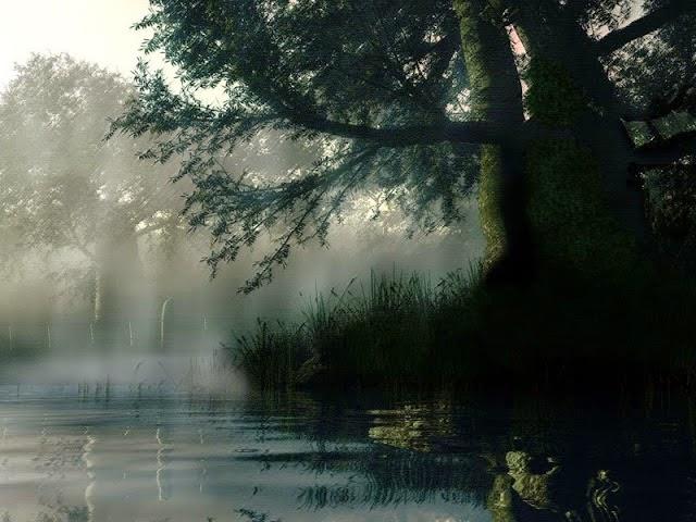 hình nền sương mù mờ ảo