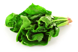 Spinach-magrush.com