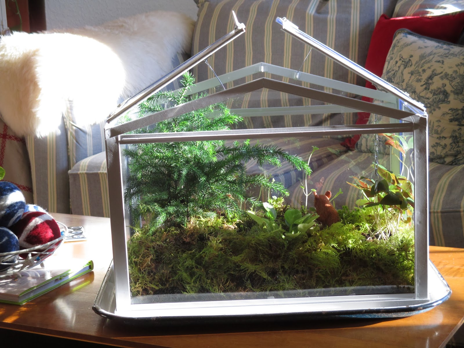 These IKEA Terrariums Are Not Only Pretty, But Functional. They Have Little  Props To Hold The Lid Open When Needed. The Terrarium Got A Little Steamy  When ...