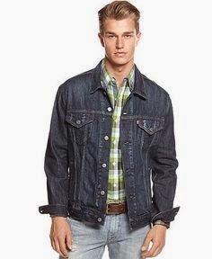 Fashion For Levis Trucker Denim Jacket