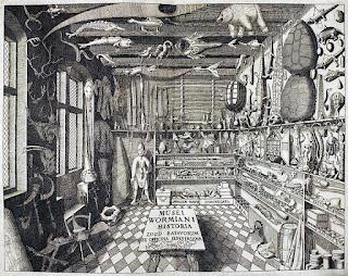 Los gabinetes de curiosidades, como el del médico danés Ole Worm