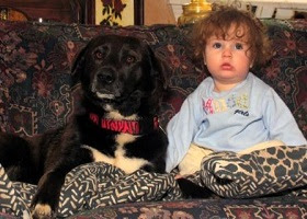 A child together with the family dog on the couch.