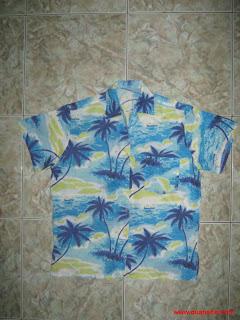 Áo sơ mi Hawaii