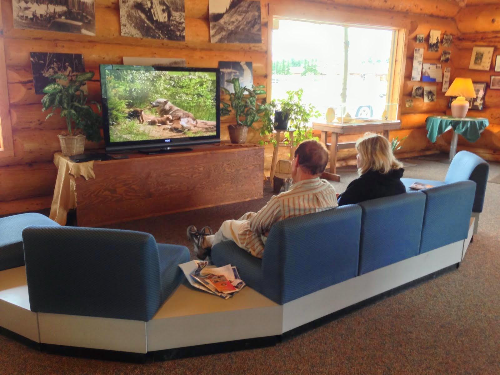 Bearfoot Guide's Alaska Travel Tips