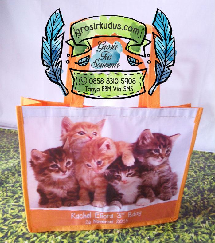souvenir ultah animal kucing