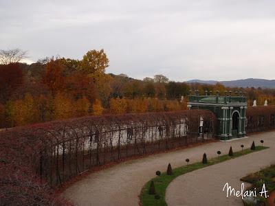 Autumn, Vienna // photo by Melani A - magsbeadscreation.com