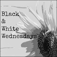 http://mymemoryart.blogspot.com/2014/04/black-white-wednesday-fuzzy.html
