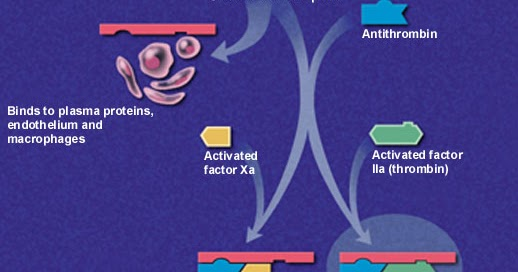 farmacos antiinflamatorios esteroideos pdf