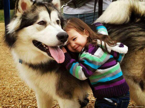 """Những bức ảnh giữa bé và động vật khiến trái tim bạn """"tan chảy"""""""