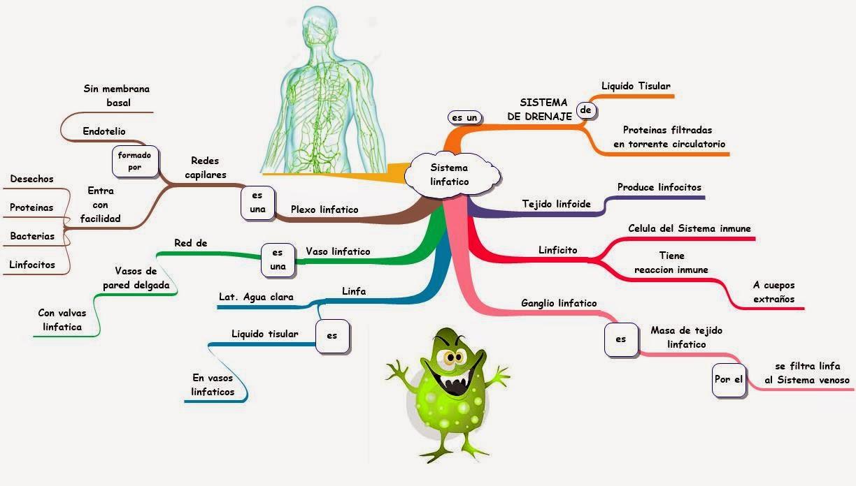 El Mapa Médico: Introduccion Moore