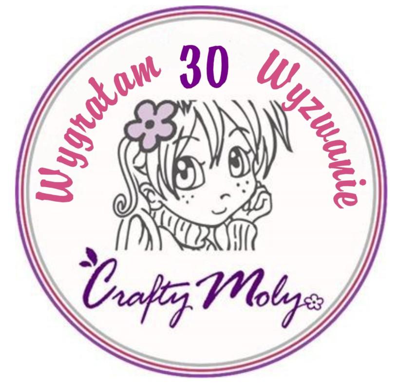 Pierwsze miejsce w CraftyMoly :)