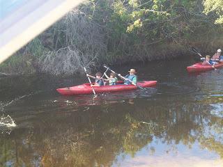 The Kayak trip of a 'lifetime